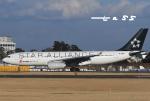 tassさんが、成田国際空港で撮影した中国国際航空 A330-243の航空フォト(飛行機 写真・画像)