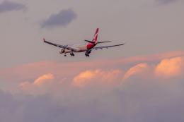 mameshibaさんが、成田国際空港で撮影したカンタス航空 A330-303の航空フォト(飛行機 写真・画像)