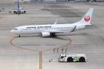 ゆうゆう@NGO さんが、中部国際空港で撮影した日本航空 737-846の航空フォト(飛行機 写真・画像)