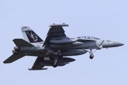 MH-38Rさんが、三沢飛行場で撮影したアメリカ海軍 EA-18G Growlerの航空フォト(飛行機 写真・画像)