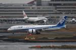 kuro2059さんが、羽田空港で撮影した全日空 787-8 Dreamlinerの航空フォト(飛行機 写真・画像)