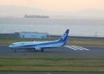 まひろさんが、中部国際空港で撮影した全日空 737-881の航空フォト(飛行機 写真・画像)