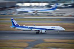 まいけるさんが、羽田空港で撮影した全日空 A321-211の航空フォト(飛行機 写真・画像)