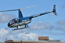 ブルーさんさんが、クロスランドおやべ で撮影した日本法人所有 R44 IIの航空フォト(飛行機 写真・画像)