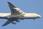 TAOTAOさんが、中部国際空港で撮影したアントノフ・エアラインズ An-225 Mriyaの航空フォト(飛行機 写真・画像)
