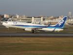 Y@RJGGさんが、伊丹空港で撮影した全日空 737-881の航空フォト(飛行機 写真・画像)