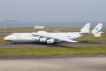 kuraykiさんが、中部国際空港で撮影したアントノフ・エアラインズ An-225 Mriyaの航空フォト(飛行機 写真・画像)
