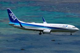MARK0125さんが、新石垣空港で撮影した全日空 737-881の航空フォト(飛行機 写真・画像)