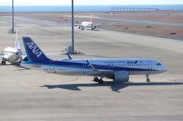 ゆうゆう@NGO さんが、中部国際空港で撮影した全日空 A320-271Nの航空フォト(飛行機 写真・画像)