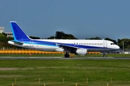 パール大山さんが、成田国際空港で撮影した全日空 A320-211の航空フォト(飛行機 写真・画像)
