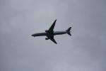 Hide0404さんが、羽田空港で撮影した全日空 777-381の航空フォト(飛行機 写真・画像)