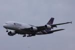 Mr.boneさんが、成田国際空港で撮影したタイ国際航空 A380-841の航空フォト(飛行機 写真・画像)