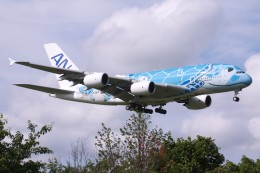 Mr.boneさんが、成田国際空港で撮影した全日空 A380-841の航空フォト(飛行機 写真・画像)