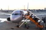panchiさんが、成田国際空港で撮影したジェットスター・ジャパン A320-232の航空フォト(飛行機 写真・画像)