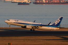 wisさんが、羽田空港で撮影した全日空 737-881の航空フォト(飛行機 写真・画像)