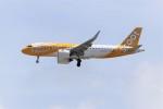 OMAさんが、シンガポール・チャンギ国際空港で撮影したスクート A320-271Nの航空フォト(飛行機 写真・画像)