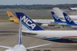 Rsaさんが、成田国際空港で撮影したセブパシフィック航空 A330-343Eの航空フォト(飛行機 写真・画像)