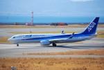 リュウキさんが、関西国際空港で撮影した全日空 737-8ALの航空フォト(飛行機 写真・画像)