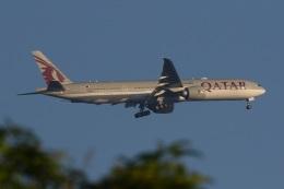 fox_samさんが、ニノイ・アキノ国際空港で撮影したカタール航空 777-3DZ/ERの航空フォト(飛行機 写真・画像)