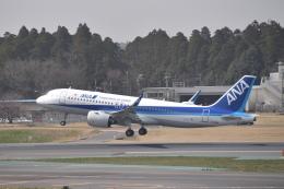 turenoアカクロさんが、成田国際空港で撮影した全日空 A320-271Nの航空フォト(飛行機 写真・画像)