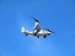 cooymdさんが、普天間飛行場で撮影したアメリカ海兵隊 MV-22Bの航空フォト(飛行機 写真・画像)