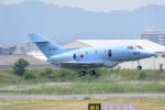 じょ~まんさんが、名古屋飛行場で撮影した航空自衛隊 U-125A(Hawker 800)の航空フォト(飛行機 写真・画像)