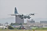 じょ~まんさんが、名古屋飛行場で撮影した航空自衛隊 C-130H Herculesの航空フォト(飛行機 写真・画像)
