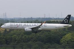 だいすけさんが、成田国際空港で撮影したアシアナ航空 A321-231の航空フォト(飛行機 写真・画像)