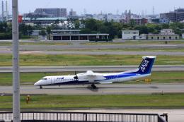 forgingさんが、伊丹空港で撮影したANAウイングス DHC-8-402Q Dash 8の航空フォト(飛行機 写真・画像)