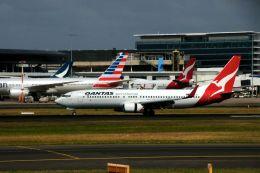 まいけるさんが、シドニー国際空港で撮影したカンタス航空 737-838の航空フォト(飛行機 写真・画像)