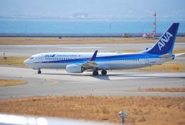 リュウキさんが、関西国際空港で撮影した全日空 737-881の航空フォト(飛行機 写真・画像)