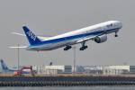 wisさんが、羽田空港で撮影した全日空 777-381/ERの航空フォト(飛行機 写真・画像)