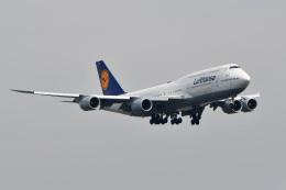 wisさんが、羽田空港で撮影したルフトハンザドイツ航空 747-830の航空フォト(飛行機 写真・画像)