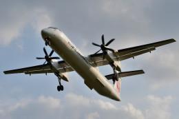 wisさんが、新石垣空港で撮影した琉球エアーコミューター DHC-8-402Q Dash 8 Combiの航空フォト(飛行機 写真・画像)