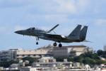TAKAHIDEさんが、那覇空港で撮影した航空自衛隊 F-15J Eagleの航空フォト(飛行機 写真・画像)