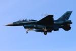 osakanaさんが、岐阜基地で撮影した航空自衛隊 F-2Bの航空フォト(飛行機 写真・画像)