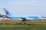 shibu03さんが、成田国際空港で撮影した大韓航空 A380-861の航空フォト(飛行機 写真・画像)
