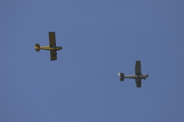 マーサさんが、成田国際空港で撮影した日本モーターグライダークラブ A-1 Huskyの航空フォト(飛行機 写真・画像)