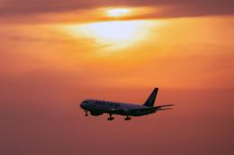 こうきさんが、成田国際空港で撮影した全日空 767-381Fの航空フォト(飛行機 写真・画像)