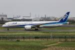 代打の切札さんが、伊丹空港で撮影した全日空 787-9の航空フォト(飛行機 写真・画像)