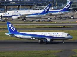 hanatomo735さんが、羽田空港で撮影した全日空 A320-211の航空フォト(飛行機 写真・画像)