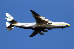 なごやんさんが、中部国際空港で撮影したアントノフ・エアラインズ An-225 Mriyaの航空フォト(飛行機 写真・画像)
