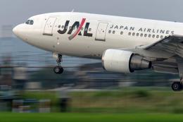 KEEBIRDさんが、名古屋飛行場で撮影した日本航空 A300B4-622Rの航空フォト(飛行機 写真・画像)