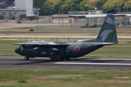 Joshuaさんが、名古屋飛行場で撮影した航空自衛隊 C-130H Herculesの航空フォト(飛行機 写真・画像)