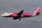 BOEING737MAX-8さんが、成田国際空港で撮影したピーチ A320-214の航空フォト(飛行機 写真・画像)