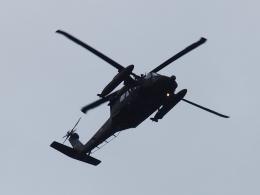 FT51ANさんが、下総航空基地で撮影した陸上自衛隊 UH-60JAの航空フォト(飛行機 写真・画像)