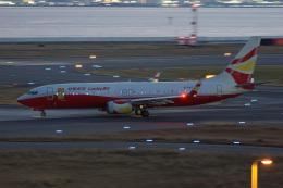 神宮寺ももさんが、関西国際空港で撮影した雲南祥鵬航空 737-84Pの航空フォト(飛行機 写真・画像)