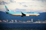 まいけるさんが、関西国際空港で撮影した大韓航空 737-8Q8の航空フォト(飛行機 写真・画像)