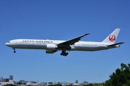 のぎスポさんが、伊丹空港で撮影した日本航空 777-346/ERの航空フォト(飛行機 写真・画像)