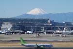 JA8037さんが、羽田空港で撮影したソラシド エア 737-86Nの航空フォト(飛行機 写真・画像)